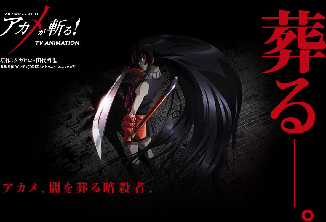 Akame ga KILL! Anime Airing 2014 Visual