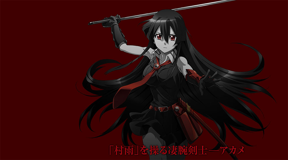 Akame-ga-KILL-Character Designs -  Akame Visual