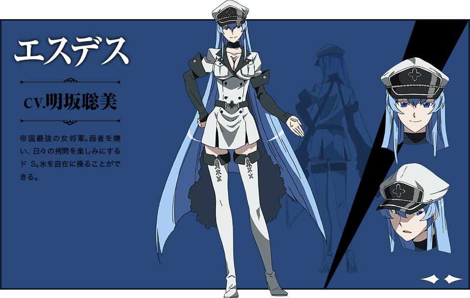 Akame-ga-KILL-Character Designs -  Esdese