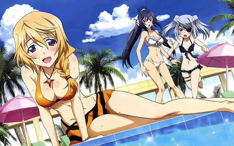 Charlotte-Dunois-Swimsuit-Image