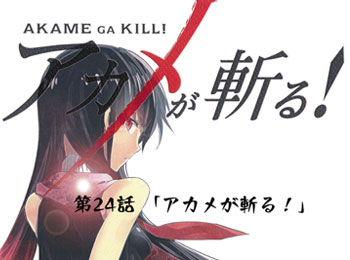 Akame ga Kill! Storyboards Leaked for Final Episode